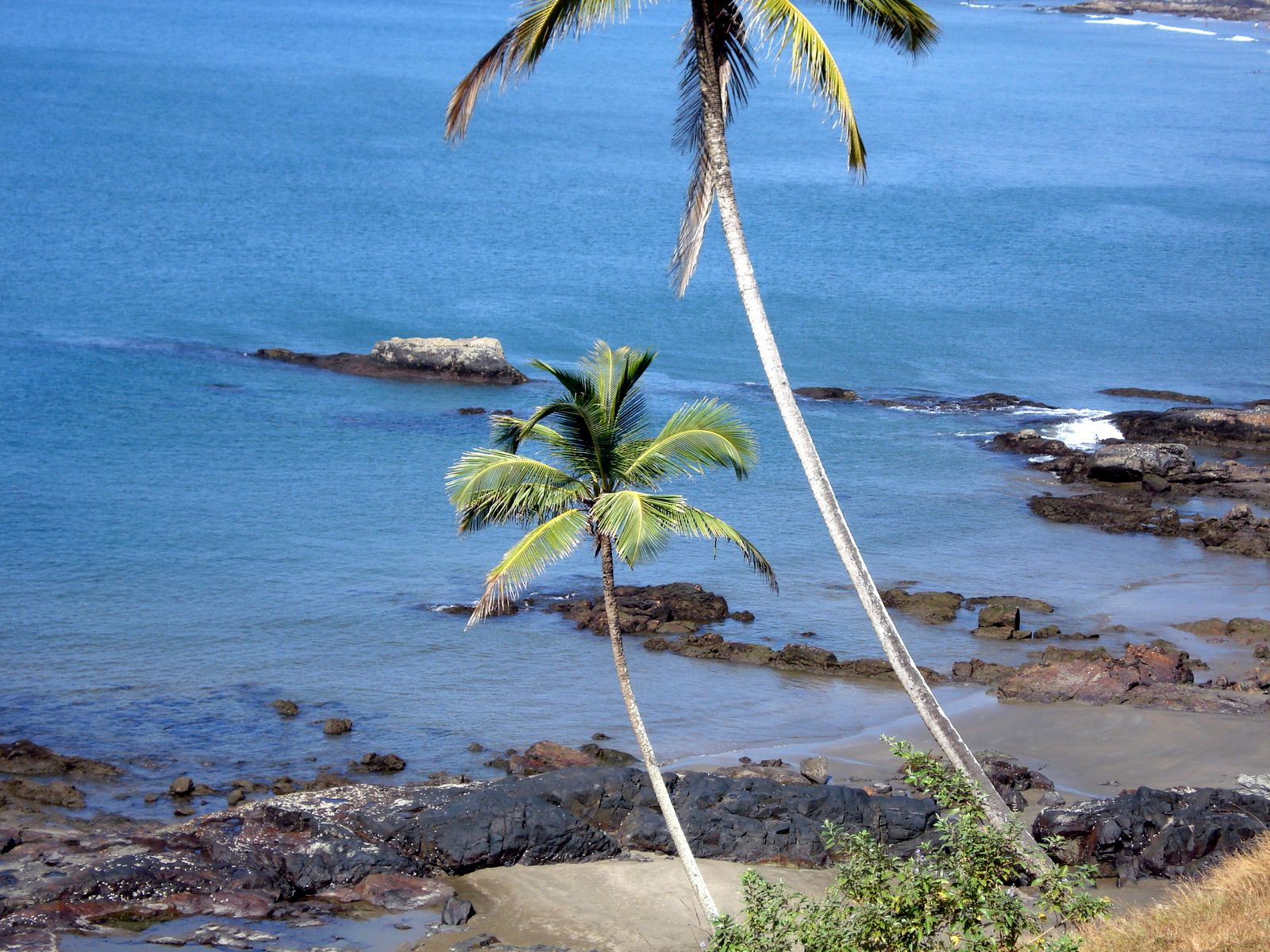 beauty of goa Natural beauty: goa is a state which is gifted with incredible natural beauty natural beauty of goa includes waterfalls, green forest, fabulous beaches and sunshine.
