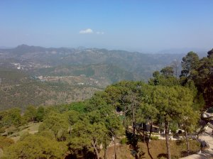 Literal Beauty in kasauli